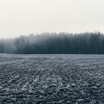 Finland 96